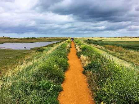 Footpath on the Norfolk broads
