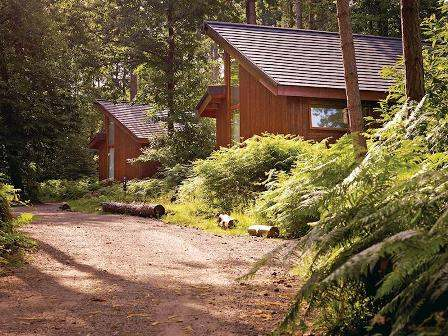 Woodland lodges in Nottinghamshire